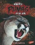 Pumas: On the Hunt (Killer Animals)