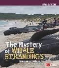 Mystery of Whale Strandings : A Cause and Effect Investigation