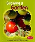 Growing a Garden (Gardens)