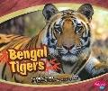 Bengal Tigers (Asian Animals)