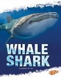 Whale Shark (Blazers)