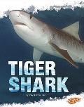 Tiger Shark (Blazers)