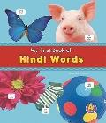 My First Book of Hindi Words (A+ Books)
