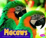 Macaws (Pebble Plus: Colorful World of Animals)