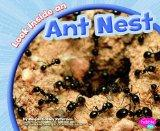Look Inside an Ant Nest (Look Inside Animal Homes)