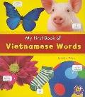 My First Book of Vietnamese Words (A+ Books: Bilingual Picture Dictionaries)