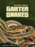Garter Snakes (Wild About Snakes)