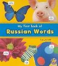 My First Book of Russian Words (A+ Books: Bilingual Picture Dictionaries)