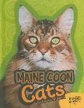 Maine Coon Cats (Edge Books)