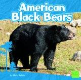 American Black Bears (First Facts: Bears)