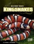 Kingsnakes
