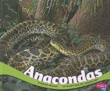 Anacondas (South American Animals)