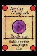 Amelia Maylock: Book Two Hidden In The Amethyst