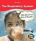 The Respiratory System: Why Am I Out of Breath?