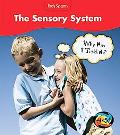 The Sensory System: Why Am I Ticklish?