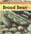 Bean (2nd Edition) (Heinemann First Library)