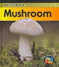 Mushroom (2nd Edition) (Heinemann First Library)