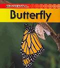 Butterfly: 2nd Edition (Life Cycle of a)