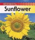 Sunflower: 2nd Edition (Life Cycle of a)