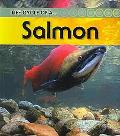 Salmon: 2nd Edition (Life Cycle of a)