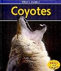 Coyotes (2nd Edition) (Heinemann Read and Learn)