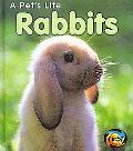 Rabbits (2nd Edition) (Heinemann First Library)