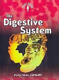 The Digestive System: (2nd Edition) (Body Focus)