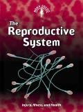 The Reproductive System: (2nd Edition) (Body Focus)