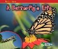 Butterfly's Life
