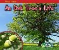 Oak Tree's Life