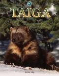 Taiga (Biomes Atlases)