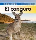 El canguro (Kangaroo) (El Ciclo De Vida / Life Cycle of a) (Spanish Edition)