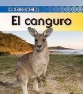 El canguro / Kangaroo (El Ciclo De Vida / Life Cycle of a. . .) (Spanish Edition)