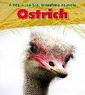 Ostrich (Heinemann Read and Learn)