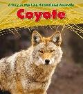 Coyote (Heinemann Read and Learn: a Day in the Life: Grassland Animals)