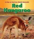 Red Kangaroo (Heinemann Read and Learn)