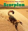 Scorpion (Heinemann Read and Learn: a Day in the Life: Desert Animals)