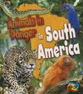 Animals in Danger in South America (Heinemann First Library)
