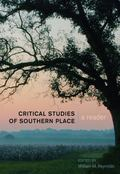 Critical Studies of Southern Place : A Reader