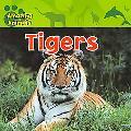 Tigers (Amazing Animals)