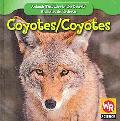 Coyotes/ Coyotes (Animals That Live in the Desert/ Animales Del Desierto)