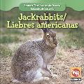 Jackrabbits/ Liebres Americanas (Animals That Live in the Desert/ Animales Del Desierto)