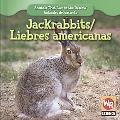 Jackrabbits/ Liebres Americanas (Animals That Live in the Desert/ Animales Del Desierto)
