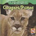 Cougars/ Puma (Animals That Live in the Mountains/Animales De Las Montaas)