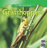 Incredible Grasshoppers (Incredible World of Insects)