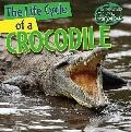 The Life Cycle of a Crocodile (Nature's Life Cycles)