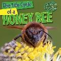 The Life Cycle of a Honeybee (Nature's Life Cycles)