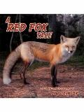 A Red Fox Tale