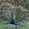 Where Peacocks Pace: A Natural Historians Guide to Warwick