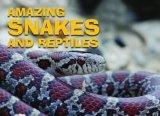 Amazing Snakes and Reptiles[Hardback,2012 Edition]